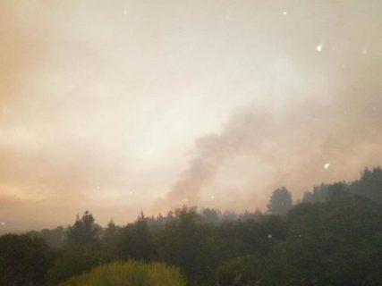 Campaña solidaria para damnificados en incendios