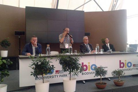 Escuela de Linares participa en Foro Internacional sobre el Planeta
