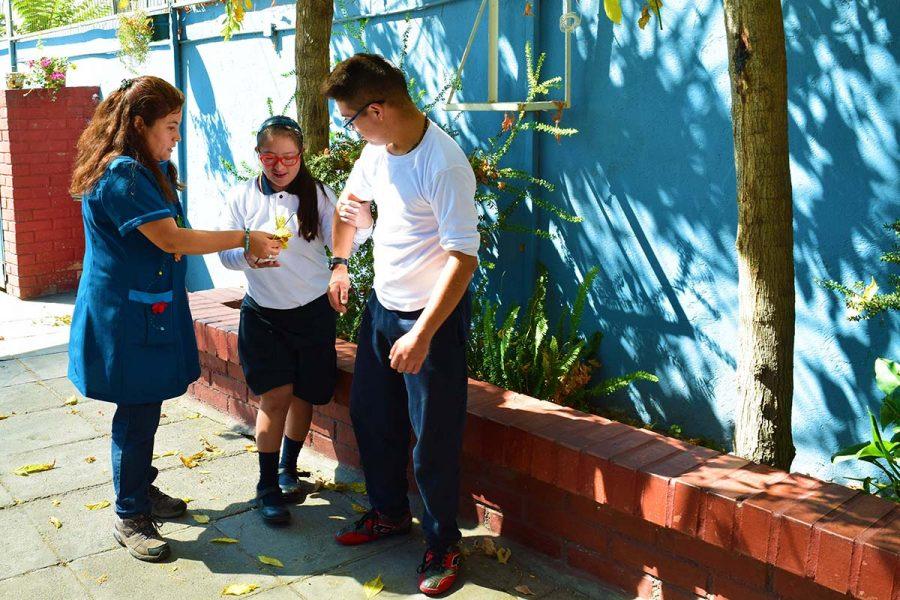Voluntarias de Don Bosco: Experiencia de consagración en la vida cotidiana