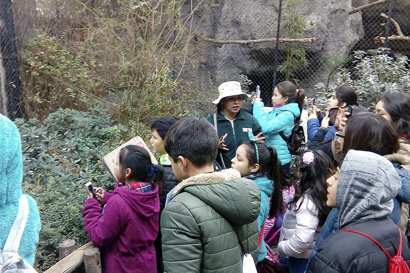 Niños de Fundación Don Bosco visitan Buin Zoo