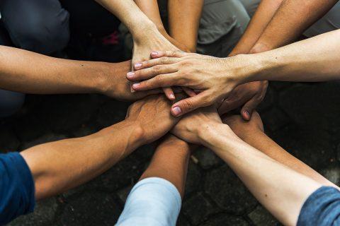 Solidaridad en tiempos de estrés