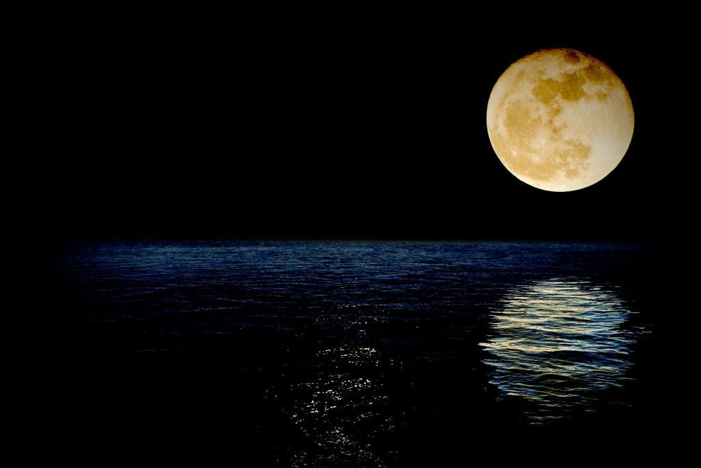 luna-1826849