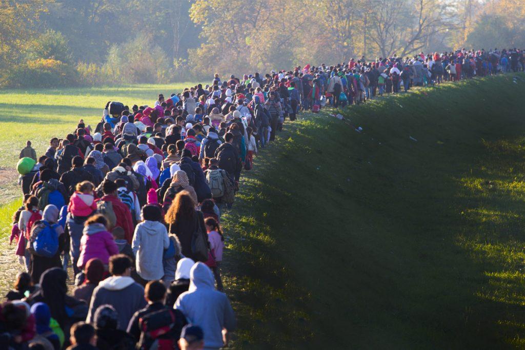 migrantes212